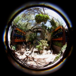 mercado garden