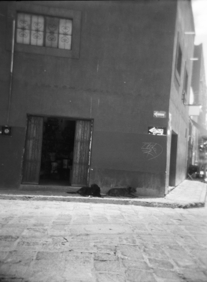 Holga dogs! I tried and tried to get a picture of these street dogs. They hung out right at this corner by the mercado and one day they had puppies with them. It's crazy - I was actually really spooked out by the street dogs, even though I love dogs and have two of my own. I was afraid to try to get to close to take their picture, even though I so wanted to and they seemed completely chill.
