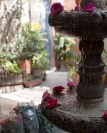 rose fountain