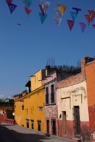 street view with flags and bird