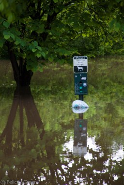 inflated floating doggie bag dispenser