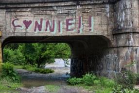 the railroad bridge on the way to Emma
